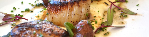 Seared Scallops with celery root purée