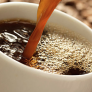 A Concise Guide to Brew a Perfect Cup of Coffee